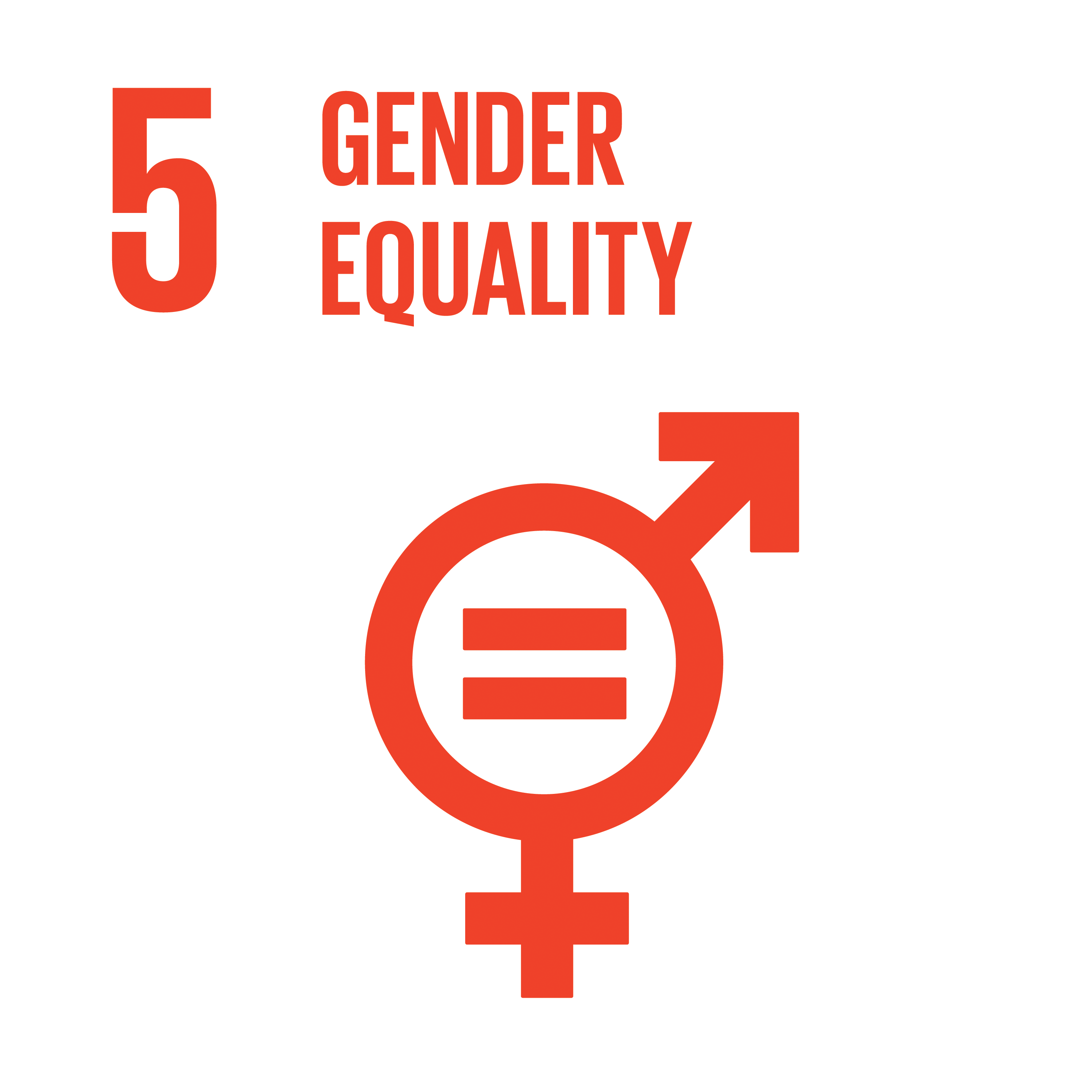 Sustainable Development Goal 5 Icon