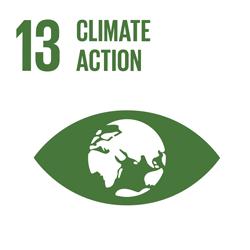 Sustainable Development Goal 13 Icon