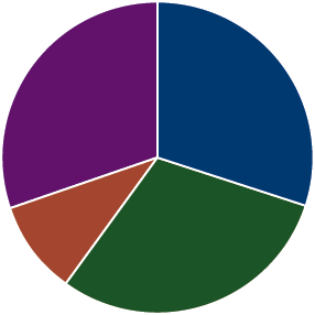A pie chart representing a Growth and Income allocation strategy